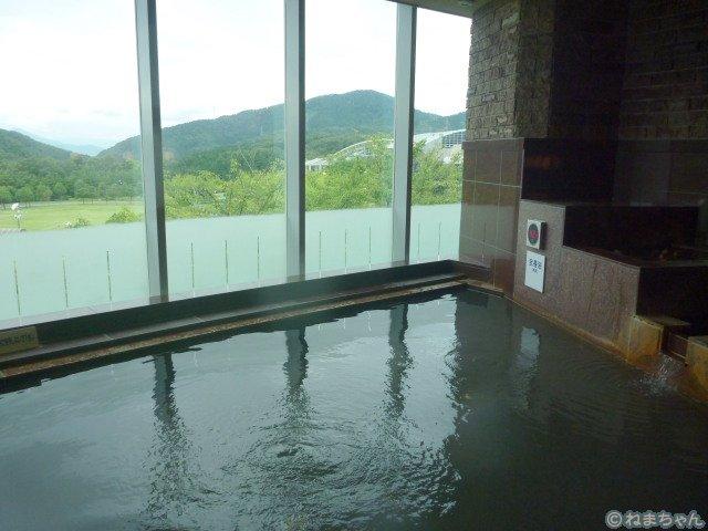 「土の湯」内風呂1