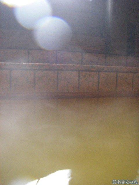 大浴場(野半の里当時)