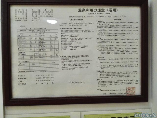 温泉分析書(露天風呂)